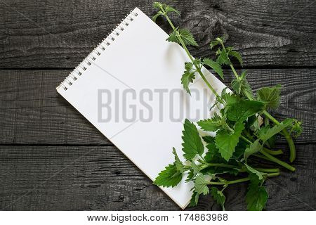 Medicinal plant melissa officinalis and notebook to write recipes and methods of application. Used in herbal medicine in the preparation of food and drinks