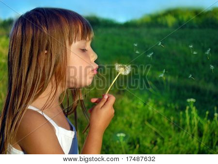 Playing on a meadow