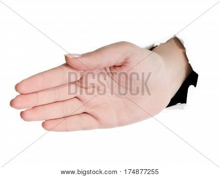 Close-up of beautiful woman's hand palm up. Isolated on white background