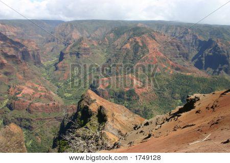 Waimea Canyon Vista