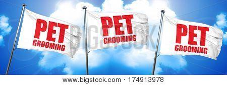 pet grooming, 3D rendering, triple flags