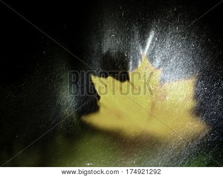 Drops Lightpainting. Yellow Maple Leaves Lay On Stone In River.