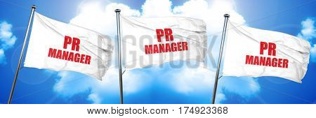 pr manager, 3D rendering, triple flags