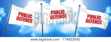 public defence, 3D rendering, triple flags