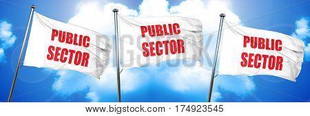public sector, 3D rendering, triple flags