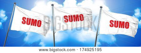 sumo sign background, 3D rendering, triple flags