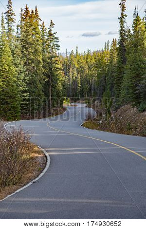 Winding road to the Mount Edith Cavell and the Cavell Lake near Jasper, Canada