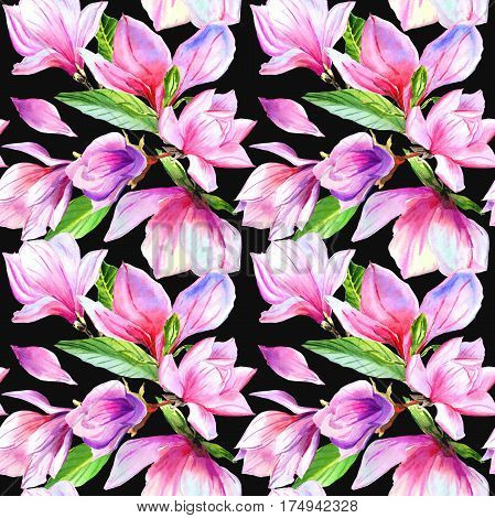 Wildflower magnolia flower pattern in a watercolor style isolated. Full name of the plant: magnolia. Aquarelle wild flower for background, texture, wrapper pattern, frame or border.
