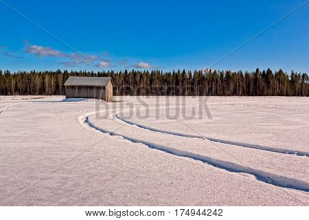 Tracks on the snowy field in the Northern Finland. I don't know what kind of vehicle has left the tracks maybe a tractor.