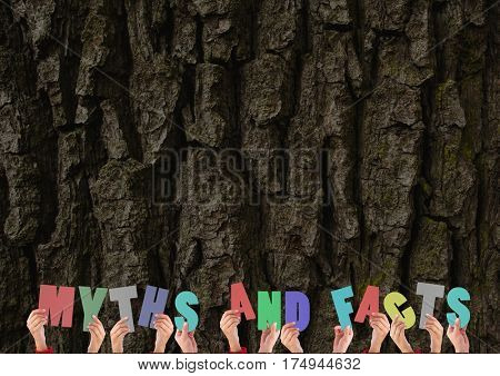 Digital composite image of hands holding myths and facts cutouts against tree trunk in the background