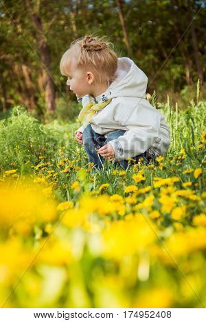 Cute little girl on the dandelions meadow in spring day
