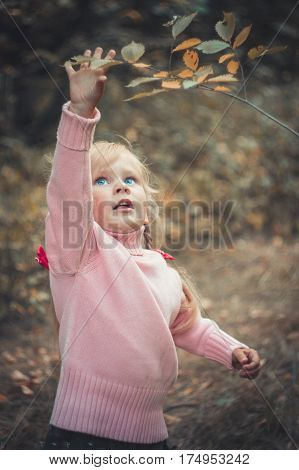 cute little girl reaches for a tree branch