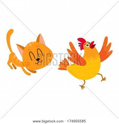 Funny red cat, kitten character chasing, playing with cackling chicken running away, cartoon vector illustration isolated on white background. Funny red cat, kitten character playing with chicken