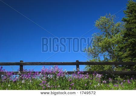 Black Fence And Blue Sky