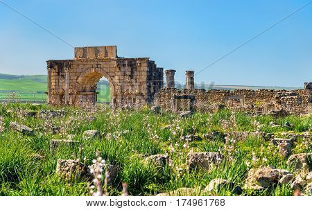 Caracalla Triumphal Arch at Volubilis, a UNESCO world heritage site in Morocco