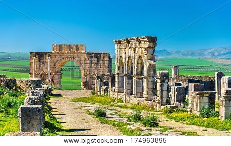 The Decumanus Maximus, the main street of Volubilis, a UNESCO world heritage site in Morocco