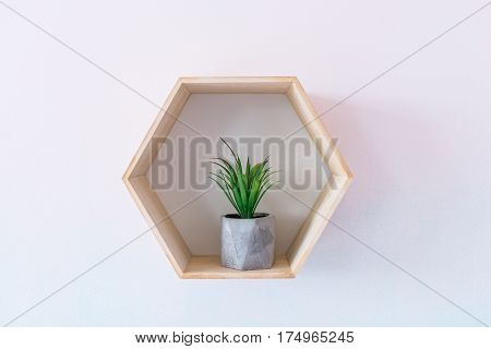 Pot with a succulent on a blue and white gradient background