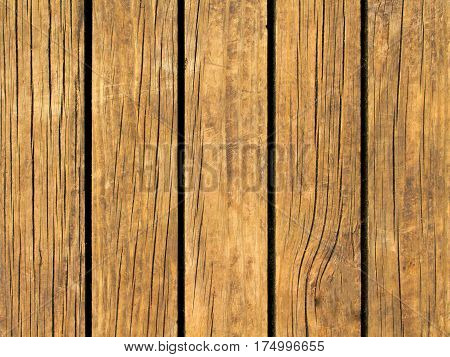 Yellow wood texture with vertical lines. Warm brown wooden background for natural banner. Timber texture closeup. Vertical wooden planks of floor backdrop photo. Natural material for banner template