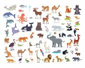 Big set of wild animals cartoon vectors. African, Australian, Arctic, Asian, South and North American fauna predators and herbivorous species.  Aquatic animals, fishes, tropical birds isolated icons poster