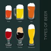 Poster with main types of beer - porter, lager, apa, ipa poster