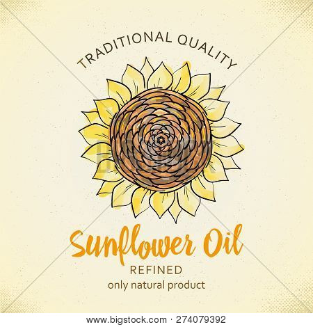 Label Design Template For Refined Sunflower Oil. Vector Illustration With Handdrawn Sunflowers On Pa
