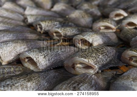 Dried Trichogaster Pectoralis Fish For Cooking In Thailand