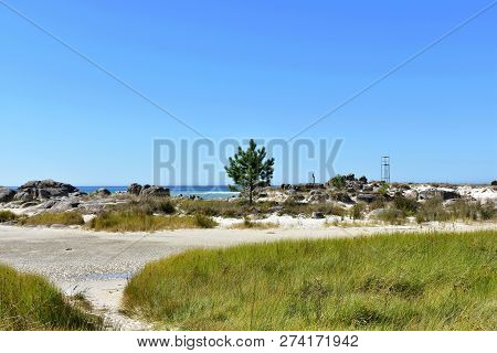 Beach With Vegetation In Dunes, Pine Trees, Rocks And Lifeguard Tower. Turquoise Water, Blue And Gre