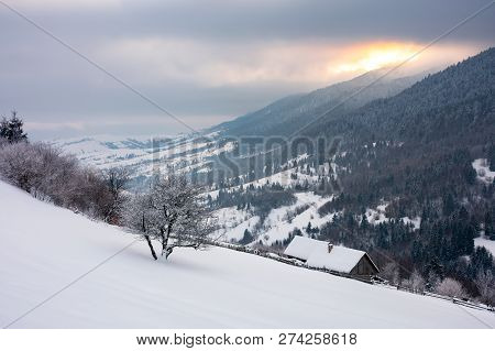 Wonderful Snowy Countryside In Mountains. Tree And Woodshed On A Snowy Slope. Winter Sun Rise Behind