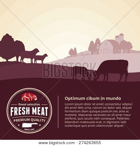 Farm Fresh Meat Illustration