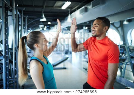 Young intercultural successful trainers giving high five to one another in modern fitness center