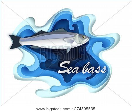Commercial Fish Sebas, Seafood In A Fashionable Paper Style Volumetric Layers