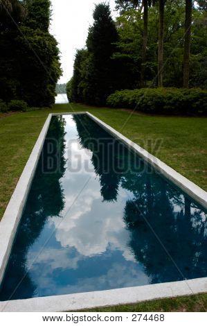 Maclay Gardens Reflecting