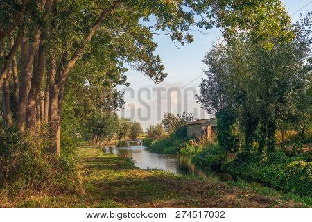 Scenic View Through The Trees. A Narrow Creek Meanders Through The Dutch Polder Landscape. A Small P