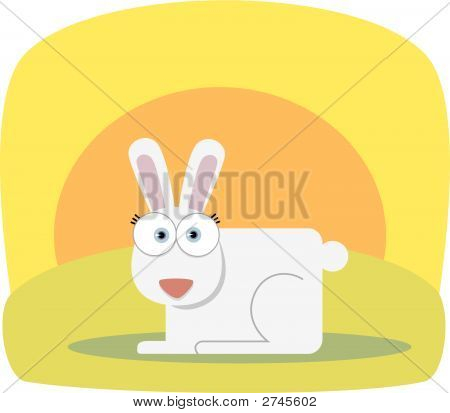 Square Animal Rabbit