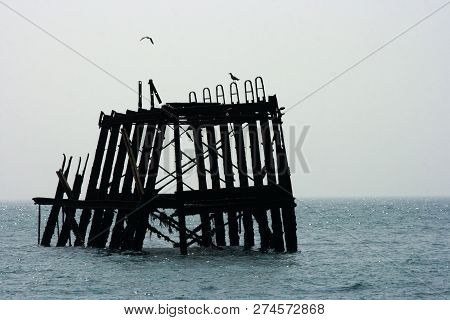 Section Of Ruined Brighton Pier With Two Seagulls