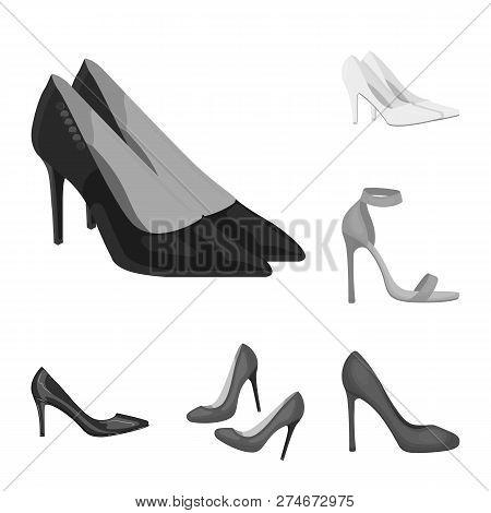 Vector Illustration Of Heel And High Symbol. Collection Of Heel And Stiletto Stock Vector Illustrati