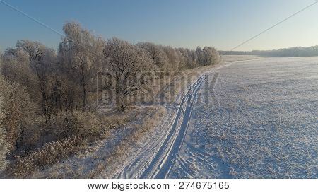 Aerial View Winter Landscape Snow Covered Field And Trees In Countryside. Winter Road In Countryside
