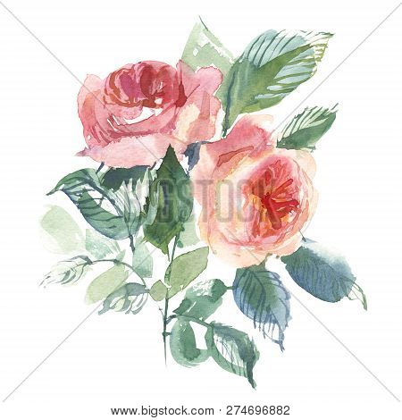 Vintage Flower Overwhite Background. Wedding Flowers Bundle. Flower Of Watercolor Detailed Hand Draw