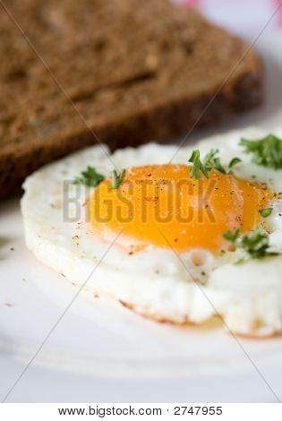 Delicious Fried Egg