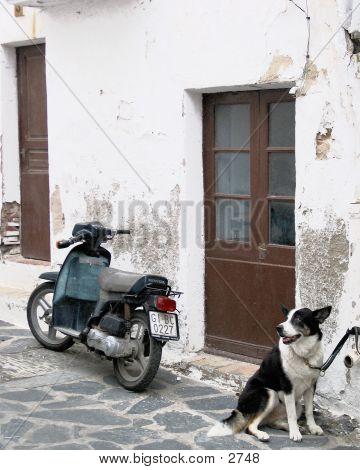 Street In Cadaques Spain