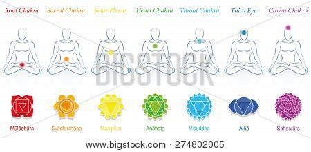 Chakras Of A Meditating Man. Symbols With Sanskrit Names And Appropriate Colors. Isolated Vector Ill