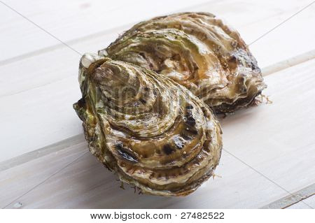 two oyster on white wood