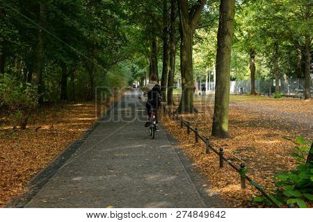 Healthy lifestyle concept at Berlin Tiergarten park. Woman is cycling on a path. Forest at autumn background.