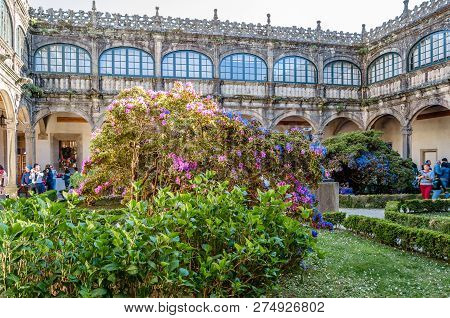 Santiago De Compostela, Spain - April 3, 2015: Exhibition Of Camelia Flowers In The Cloister Of The