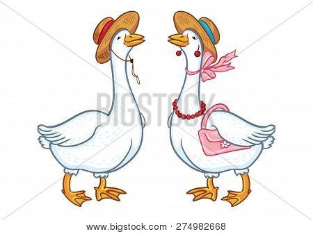 Pair Of Geese With A Hat, Sketch On A White Background, Cartoon Funny Goose, Poultry Domestic Nature