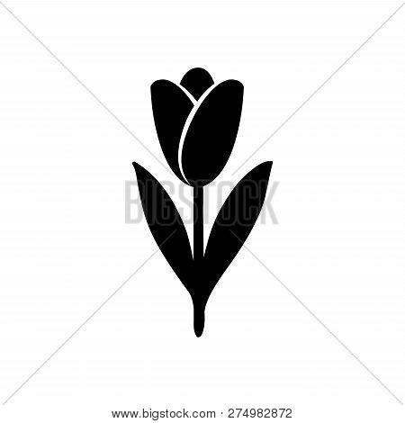 Tulip Icon. Tulip Silhouette. Hand Drawn Style Vector Design Illustrations