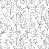 Hand drawn set sketch style Wild flowers . Line nature style,Drawing flora,hand drawn botany. Vector illustration. poster
