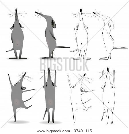 Cartoon Mouse Character Mascot