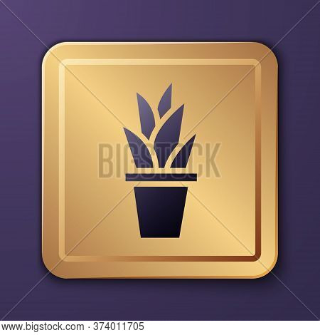 Purple Plant In Pot Icon Isolated On Purple Background. Plant Growing In A Pot. Potted Plant Sign. G