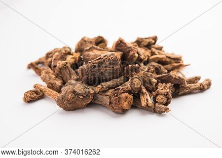 Hemidesmus Indicus Or Indian Sarsaparilla Also Known As Anantamul Or Anant Bel Is A Species Of Plan